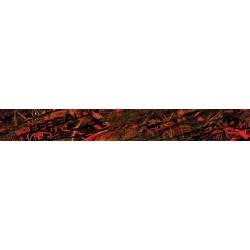 Autocolante EPSEALON RED FUSION