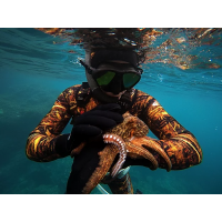 Spearfishing wetsuits and vests