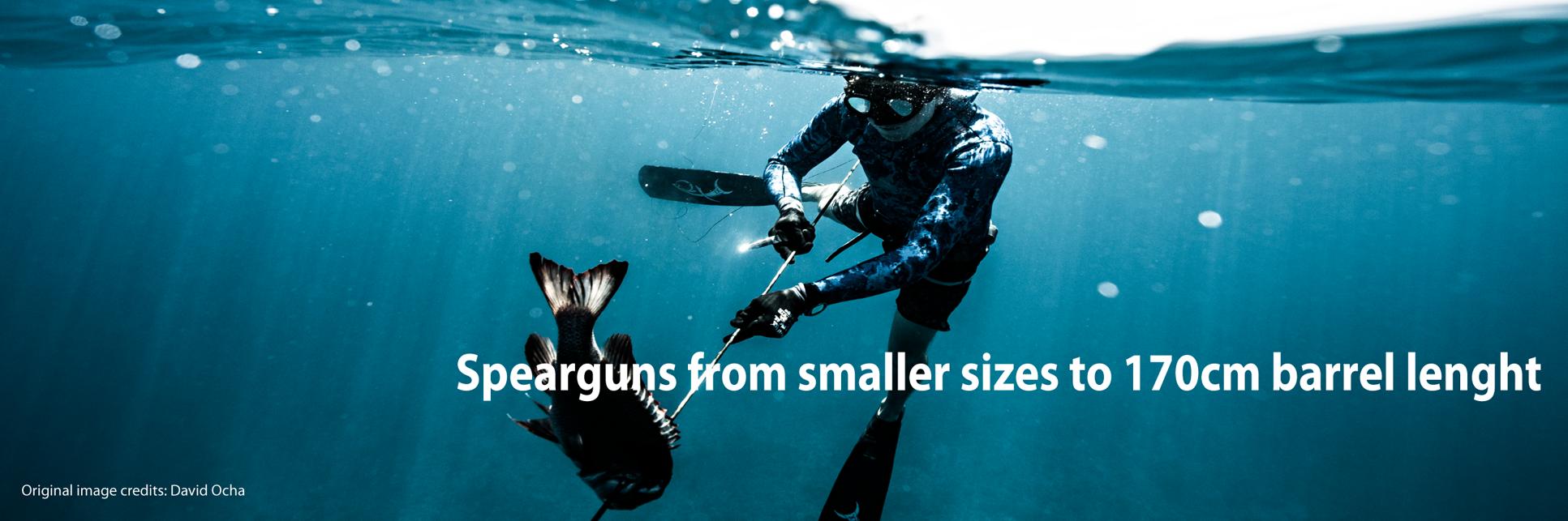 Armas para pesca submarina