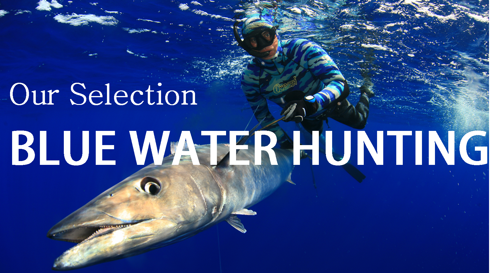 SELECCION BLUE WATER HUNTING